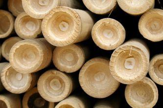 Bambus-Gestapelt